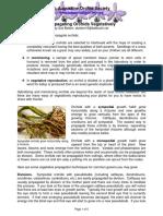 Propagating_Orchids_Vegetatively.pdf
