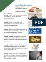 Diversos tipos de Lenguaje