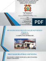 Informe Prácticas Pre Prof UANCV