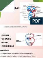 CARDIO, LINFATICO E INFECCIONES DEL CORAZON..