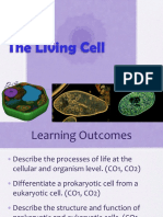 7. Cell Structure and Function.pdf