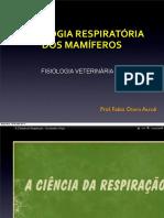 Fisio_respiraçao