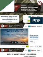 Patología del concreto en ambientes agresivos - Miguel García Mulford