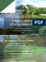 CAMBIOS-MENORES-O-GIRO-ORDINARIO.pdf