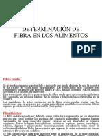 Clase 4 Fibra