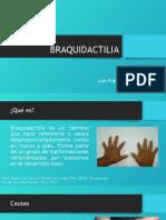 BRAQUIDACTILIA