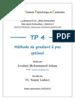 TP4 OPT LEULMI