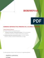 HORMONAS 3