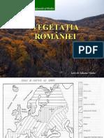 Vegetatia_Romaniei