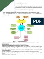 Rappels sur Matlab.pdf