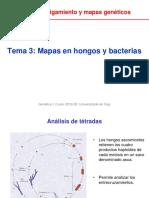 Unidad_2_Tema_3_Mapas_en_hongos_y_bacterias.pdf