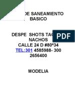 PLAN DE SANEAMIENTO DESPE SHOTS