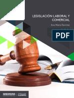 referente_pensamiento_eje3 (Legislación laboral y comercial).pdf