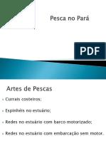 Artes de pesca Pará