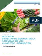 ISO 22000 Guia DNV.pdf