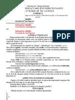 reguli de redactare