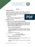 informe puente Univ. Tec. de los Andes