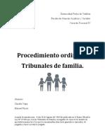 Informe procesal