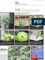 A laissez-faire approach to summer care for apple trees