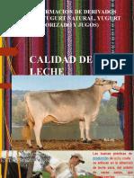 CALIDAD DE LECHE