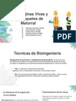 FAJINAS VIVAS Y PAQUETE DE MATORRALES.pdf