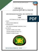 DETERMINACION DE FE Y SI (1).docx