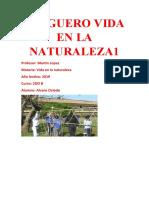JUEGUERO VIDA EN LA NATURALEZA
