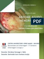 enfermagem cirurgica laparotmia