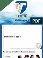 Neurodinamia II curso 2