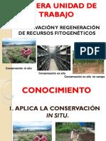 7º UNID. CONSERVACIÓN IN SITU DE RF 2019