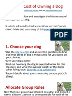 the real cost of owning a dog instructions teacher copy
