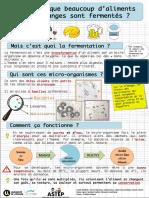 rapport_final_fermentation2