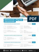 pensum-administracion-y-negocios-internacionales