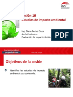 VIII_EIA_Sesión 10.pdf