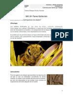 S01.S1-Tarea Extinción_Final.pdf
