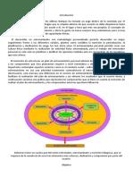 GUIA DE TRABAJO ANUAL FISIOLOGIA.docx