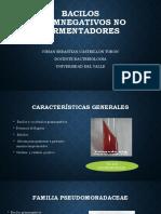 Bacilos gramnegativos no fermentadores