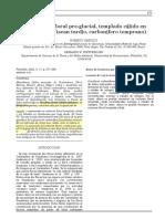 iannuzzi2002.en.es.pdf