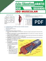 Tejido-Muscular-para-Segundo-Grado-de-Secundaria