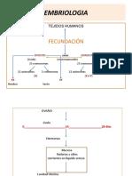 Clase de Embriología, materia viva, célula y tejidos(1)