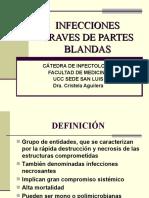 2B_INFECCIONES GRAVES DE PARTES BLANDAS