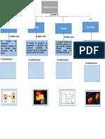 Mapa Conceptual de tratamientos termicos.Docx