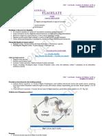 Parazitologie CURS Si LP 2.I Flagelate 23.03.20 (I)