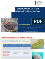 Embriología Sist nervioso nutri 2019