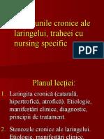 2.Afectiunile-cronice-ale-laringelui-şi-traheeitgggv