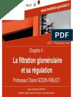 La filtration glomérulaire et sa régulation