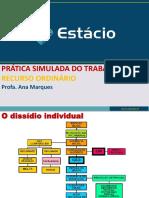 Recurso Ordinário - prática simulada trabalho