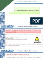 Aula 26.maio.2020. O sistema doméstico de proteção dos Direitos Humanos-1.pdf