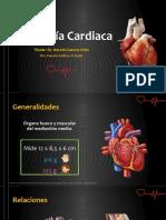 Anatomía Cardiaca.ppsx