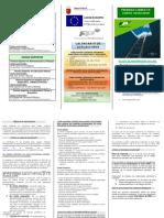 128102-Triptico folleto PRUEBAS LIBRES curso 2019_20.pdf